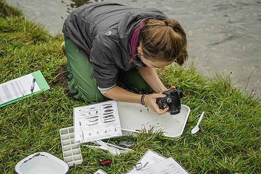 Biology Fieldwork image 1